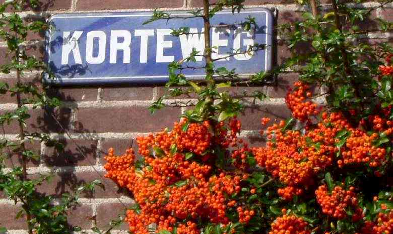 Korteweg